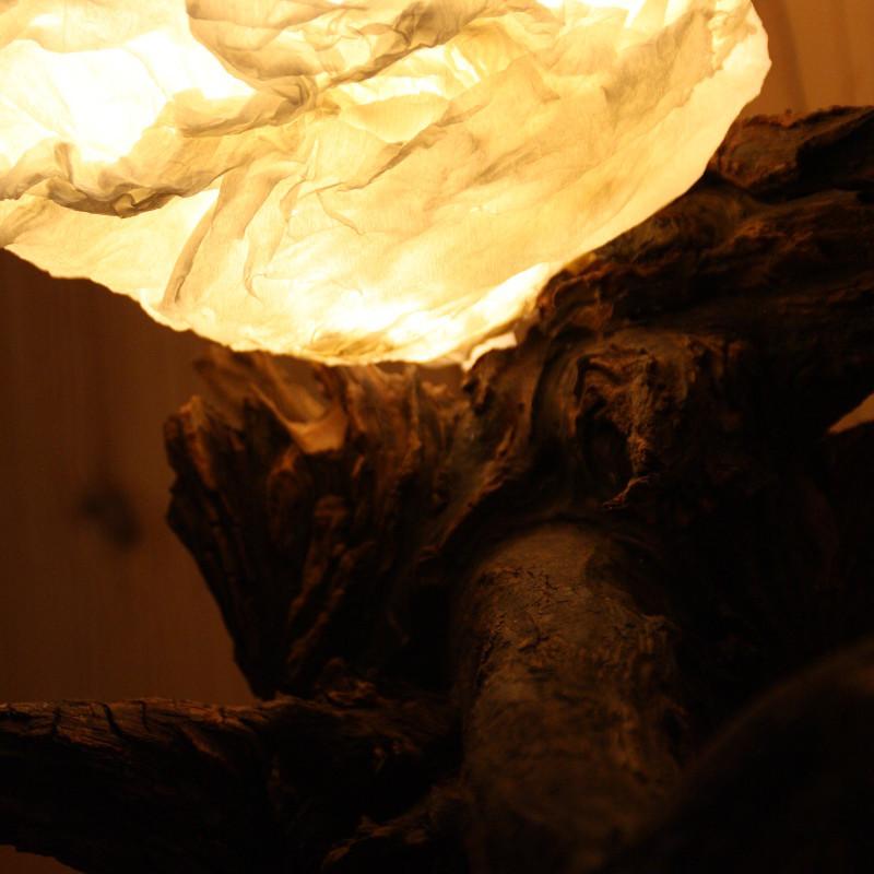 LampeU5
